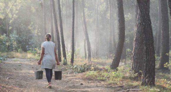 International researchers exchange experiences with the Pedrógão Grande Fire Victims Association